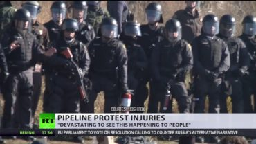 'Crazy to stand against full-suit riot police': Dakota protester may lose her arm after clashes