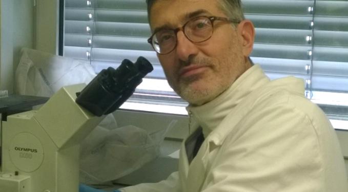 Rischi benefici vaccini? il parere del prof. Paolo Bellavite 1
