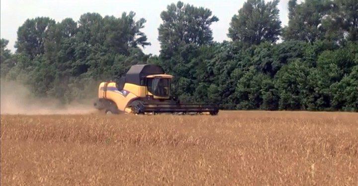 Ucraina: approvata una legge che consente la vendita di terra fertile alle multinazionali straniere 1