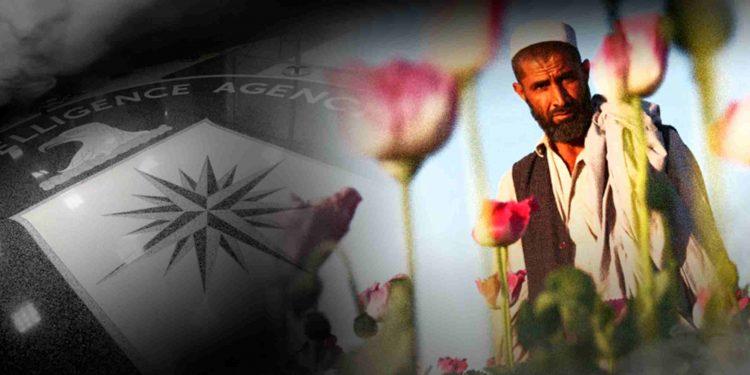 Gli USA lasciano l'Afghanistan, che è oggi il primo produttore mondiale di oppio 1
